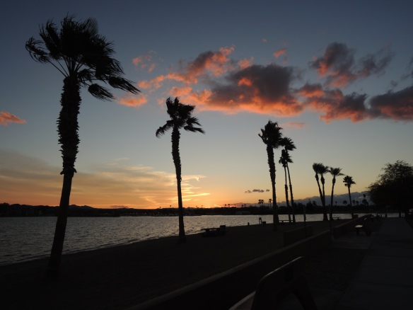 Sunset photo in Rotary Community Park, Lake Havasu City, Arizona (1-27-13)